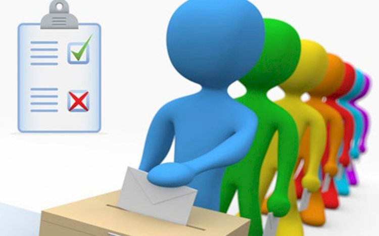 Vote - Did Coronaviurs affect your business or economic activity?