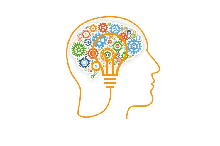 Mind Vector is the best mind mapping software